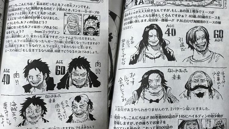 Luffy ve Ace'nin Yaşlı Halleri